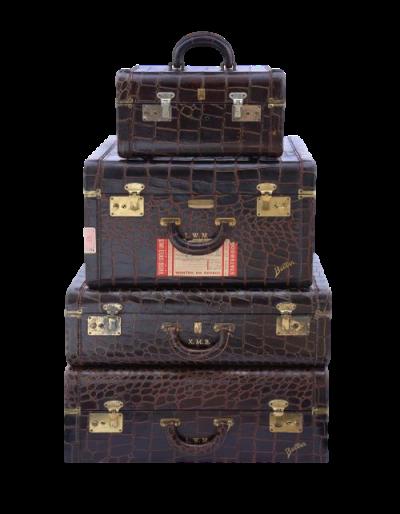 מזוודות 2.png